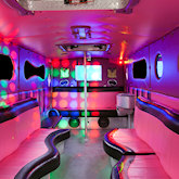 21 Seater Pink Panther Party Buses
