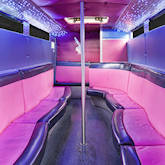 28 Seater Pink Panther Party Bus