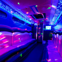 22 Seater Pink Panther Party Coach interior 2