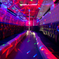 26 Seater Pink Panther Party Coach interior 2