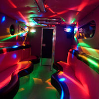 27 Seater Pink Panther Party Coach interior 2