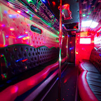 29 Seater Pink Panther Party Coach interior 1